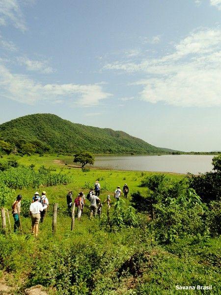 Passeio oferecido aos turistas na região da Pousada Amolar. Foto: Visit Pantanal