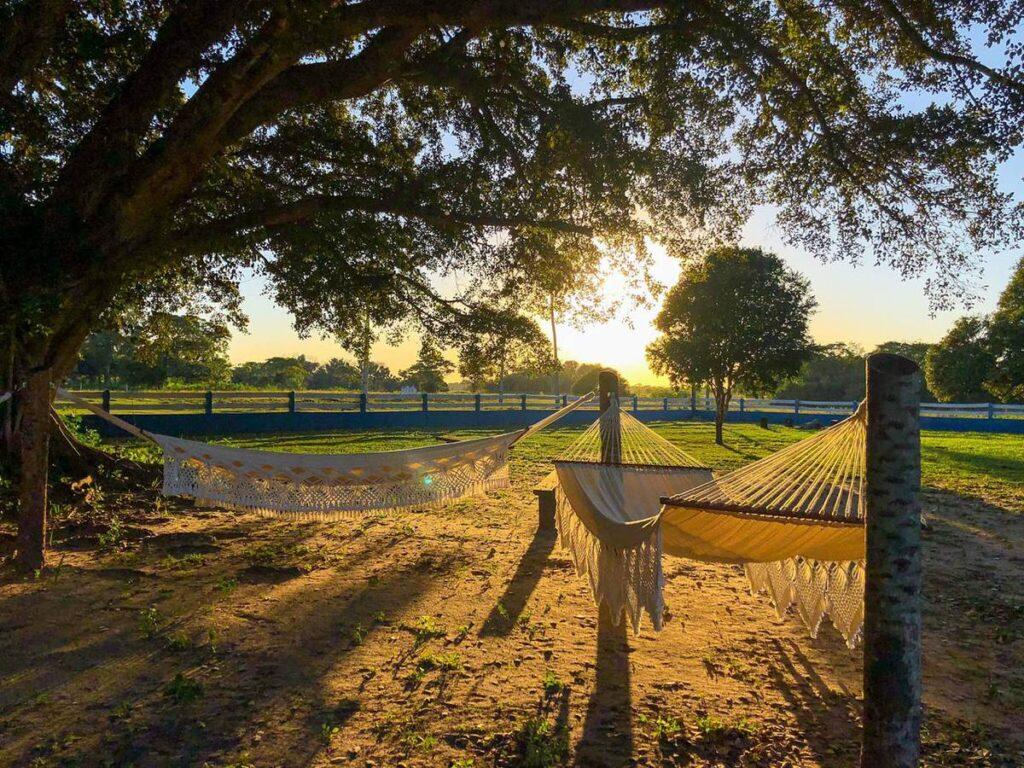 Turista pode descansar em redes e desfrutar do pôr do sol na pousada. Foto: Visit Pantanal